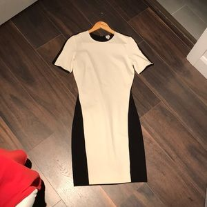 Wilfred Aritzia Tight Dress 💋